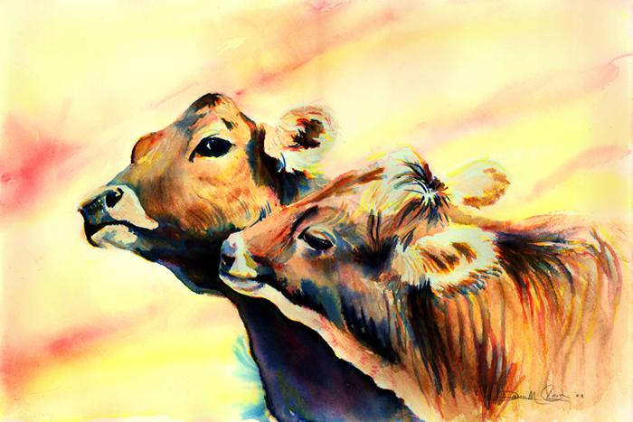 Cow's Aura